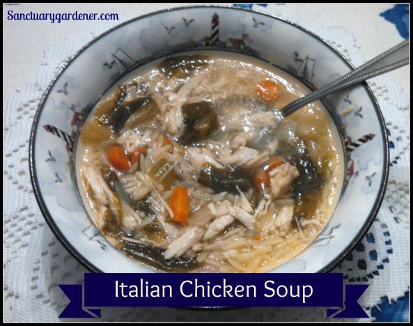 Italian Chicken Soup pic