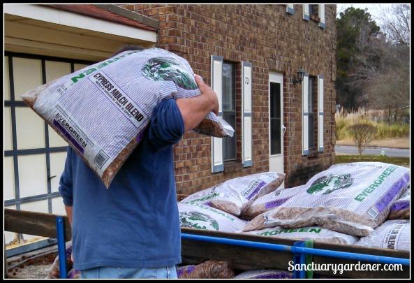 My Garden Wilson unloading the mulch