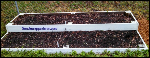 Bed 12x in April 2015 ~ Orach & perpetual spinach