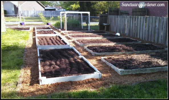 Beds ready for spring planting