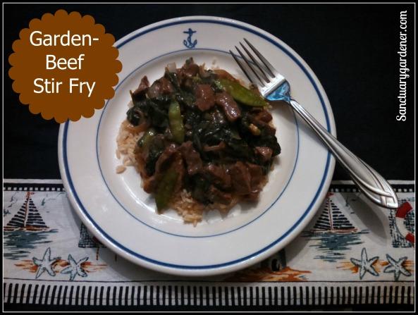 Garden-Beef Stir Fry Pic