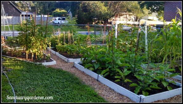 My side beds in June 2015 ~ Closeup of the far end