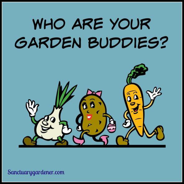 Garden Buddies Pic