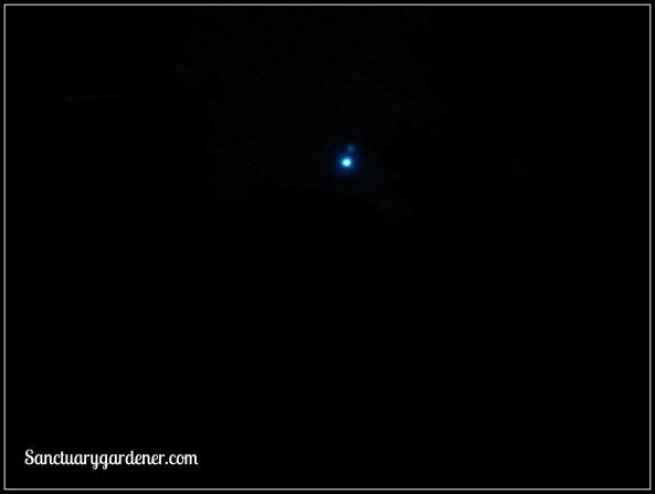 Jupiter & Venus 30 June 2015