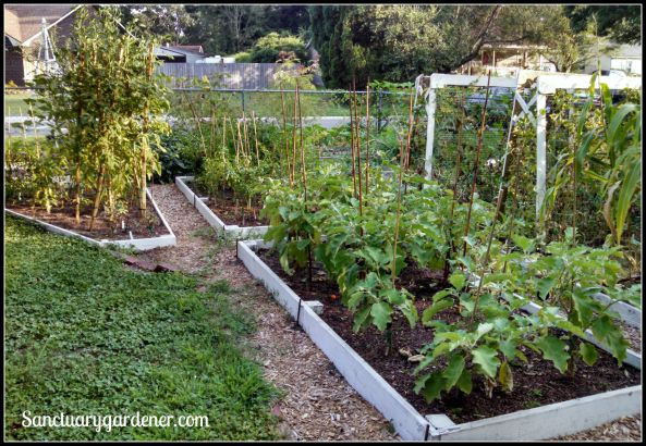 My side beds in July 2015 ~ closeup of the far end