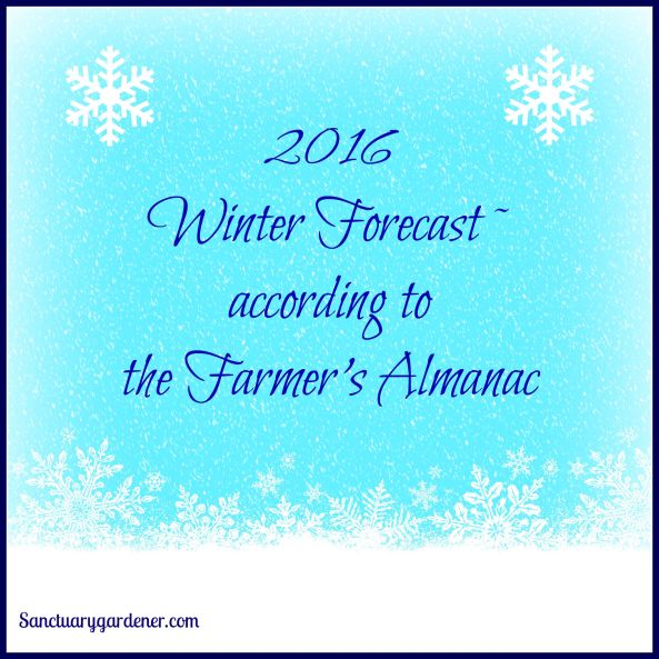 2016 Winter Forecast pic