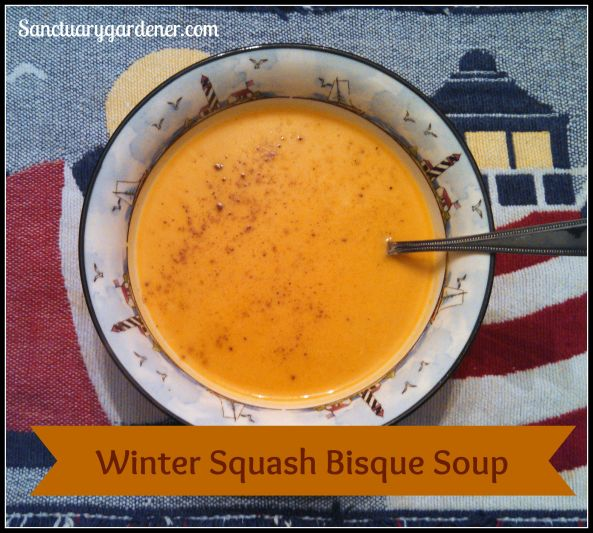 Winter Squash Bisque Soup Pic