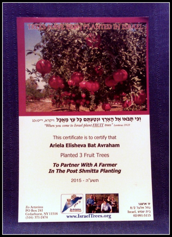 Certificate for planting 3 pomegranate trees in Israel Oct15 SG