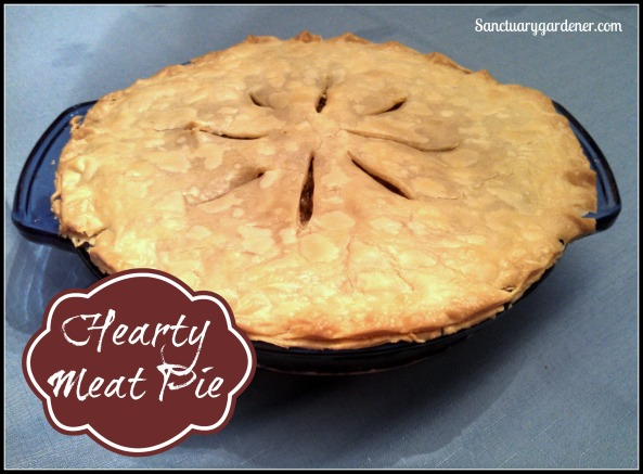 Meat Pie Pic