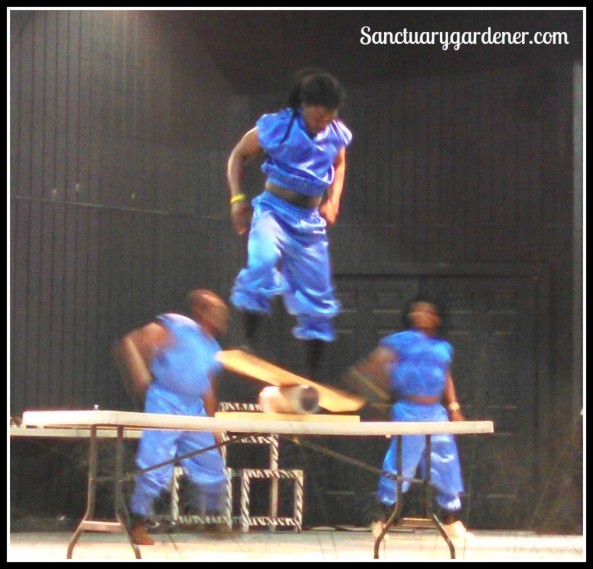 African Zulu Acrobats performing