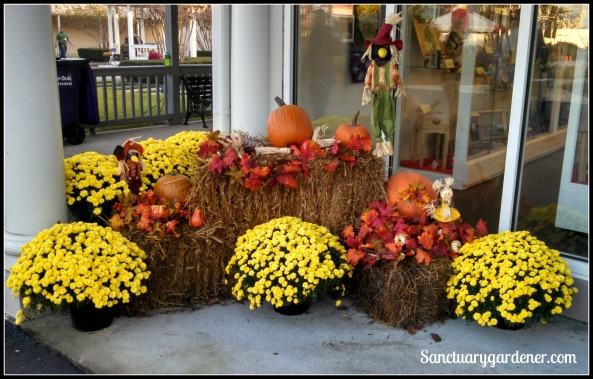 Fall arrangement outside the art building