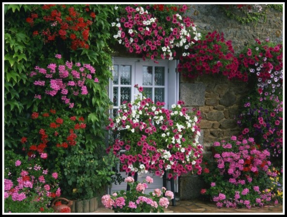 French cottage garden (photo credit: exeoinc.com)