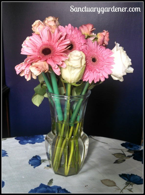 Flowers in my dining room