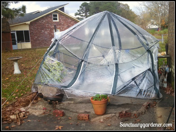 Greenhouse blown in!