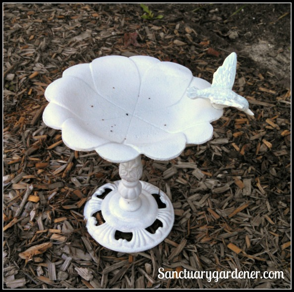 Small bird bath for bees and butterflies