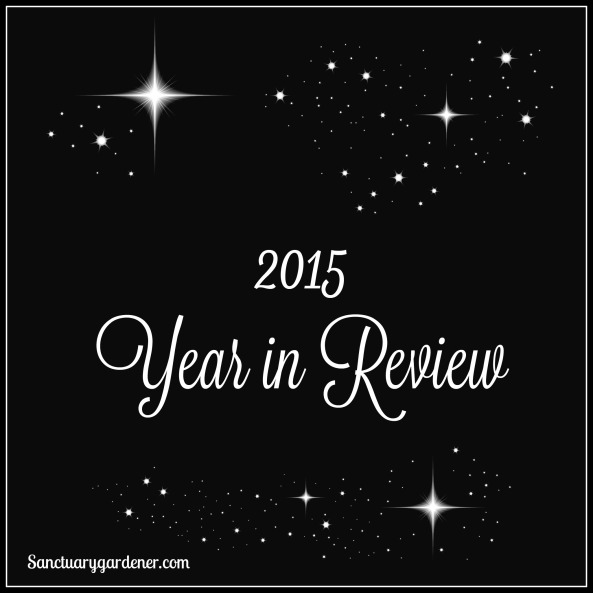 2015 Year in Review pic