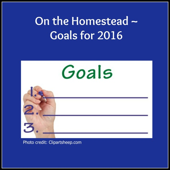 2016 Goals pic