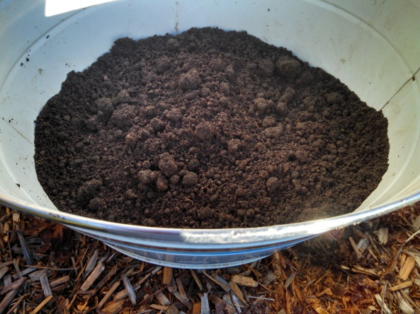 Dirt for soil sample 11Jan16